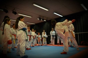 Workshop Karate door Lindsey Weerdenburg